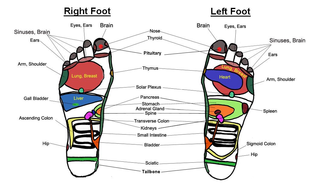Reflexology: Pseudoscience or Legitimate Therapy? | Institute for ...